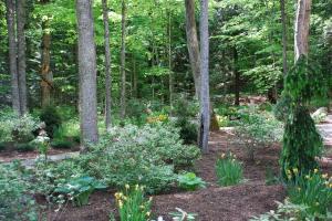 A long view of a section of the Zen Garden.